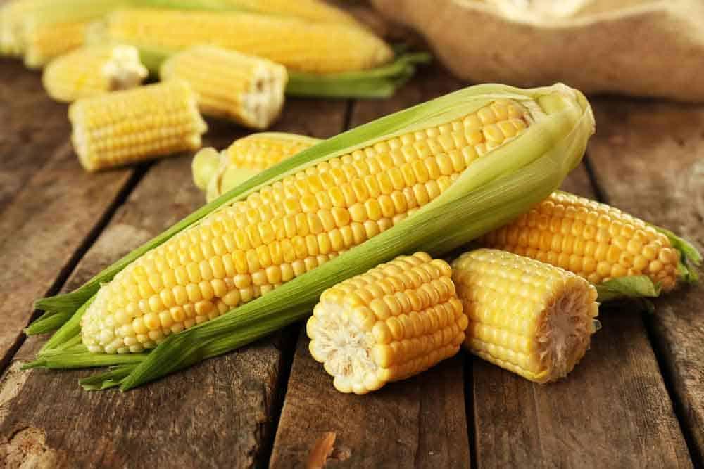 هل الذرة من الحبوب أم الفاكهة أم الخضروات؟