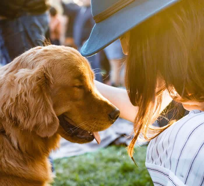 هل تميز الكلاب كلمات أصحابها؟ دراسة حديثة تجيبك