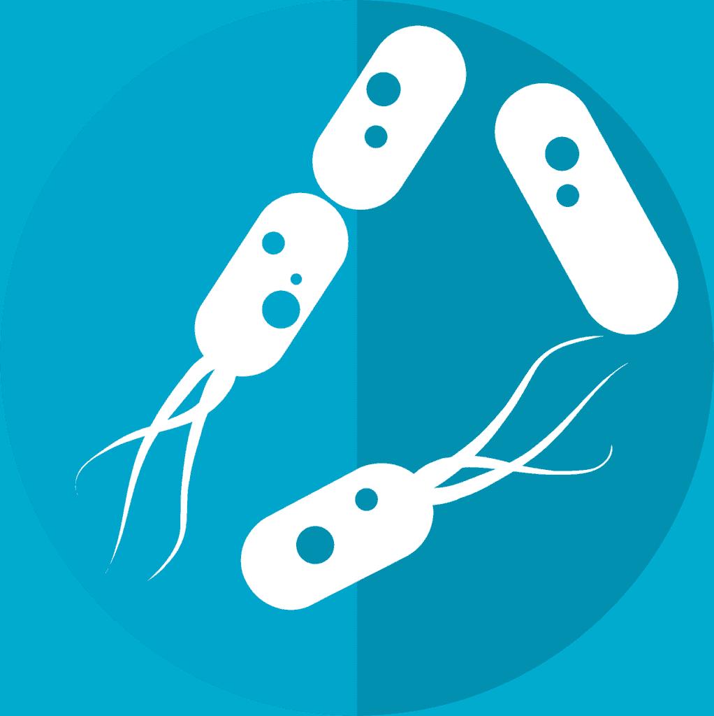 هل يمكن استخدام ميكروبيوم الأمعاء كدواء؟