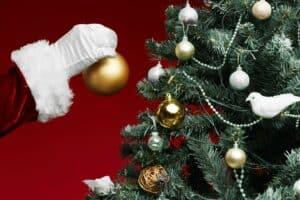ما مدى إضرار أشجار عيد الميلاد بالبيئة؟