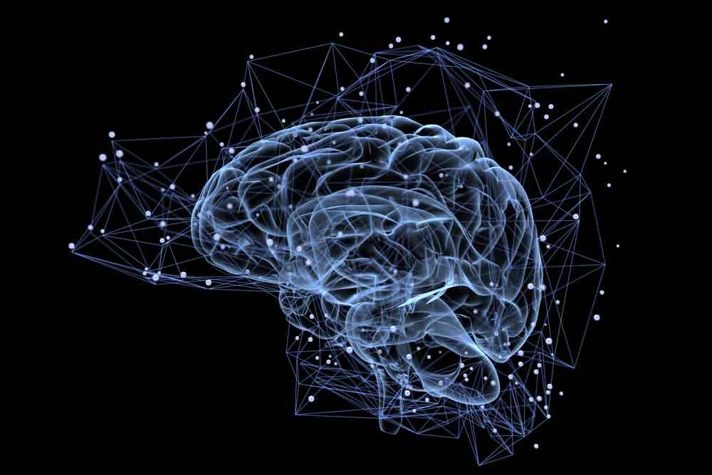 4 أسئلة تشرح لك ما هي الشبكة العصبية؟