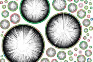 باستخدام كريسبر: أخيراً رصد تحركات الخلايا السرطانية وكيفية انتشارها