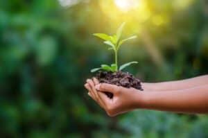 4 أسباب تجعل الحفاظ على البيئة أهم أهدافنا