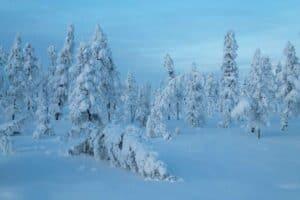 برودة الأرض قديماً قد تغيّر تنبؤاتنا حول الاحتباس الحراري