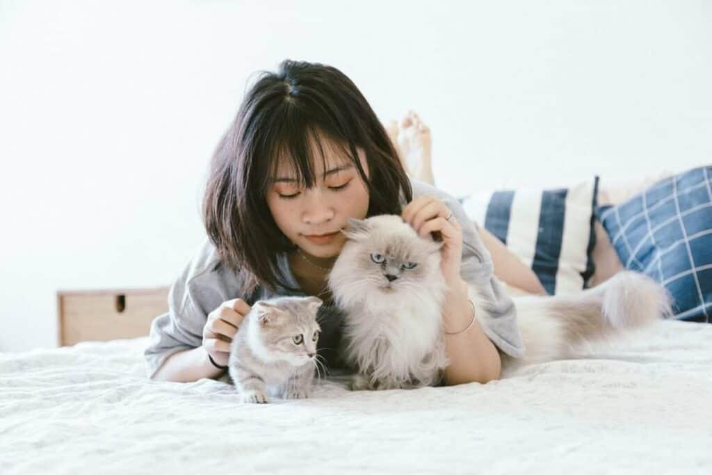 حتى لا تتعرض للعضّ أو الخدش: كيف تداعب قطتك بشكلٍ صحيح؟