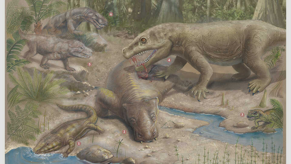 هكذا دبت الحياة على الأرض بعد الانقراض العظيم