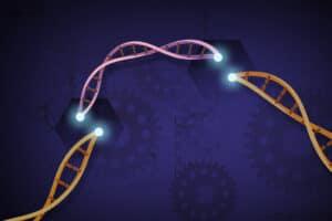 الجيل الثاني من تقنية «كريسبر» قد يُحدث ثورةً في علاج الأمراض الوراثية