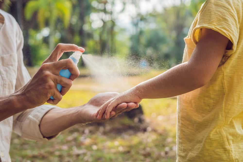 كيفية التخلص من الناموس