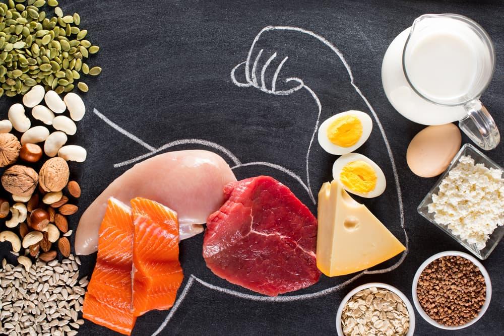 بروتين نباتي أم حيواني؟ وما الفرق بينهما؟