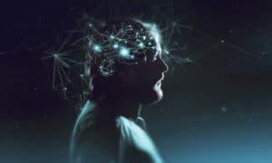 العضو الأكثر تعقيداً: كيف يعمل العقل؟