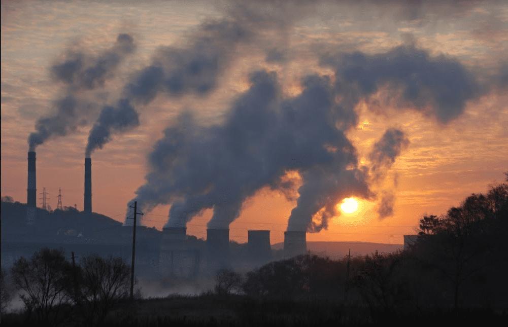لم تكتفِ بالصحة: الانبعاثات الكيميائية تغير السلوك الإنساني والحيواني