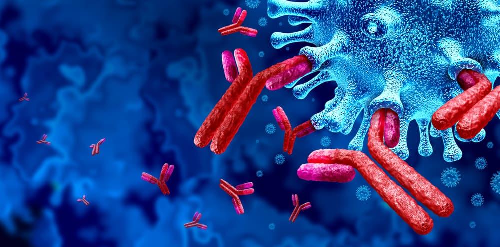 هل نصاب بفيروس كورونا مرتين؟ هذه الدراسة تجيبك