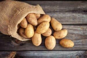 هل تناول الأطعمة المعدّلة وراثياً آمن؟