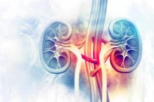 التهاب البول: دليلك المبسط من الأسباب وحتى العلاج والوقاية