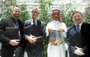 شركة تقنية زراعية تبتكر حلولاً لزراعة محاصيل تتحمل المياه المالحة في السعودية