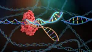 فعال وفموي ورخيص: كريسبر يمنع انتقال كورونا داخل الخلايا البشرية معملياً