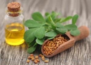 من الشعر وعلاج السكري إلى هرمون الذكورة: إليك فوائد زيت الحلبة