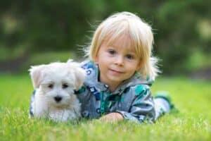 ليس مجرّد دمية: ما عليك معرفته قبل إحضار حيوان أليف لأطفالك