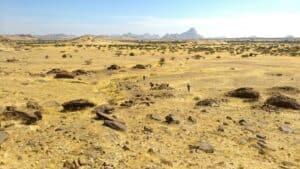 كالنجوم في المجرات: الكشف عن توزيع المقابر الإسلامية القديمة في السودان