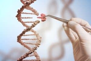 بواسطة كريسبر: إنتاج أول سلالة معدّلة جينياً من قصب السكر