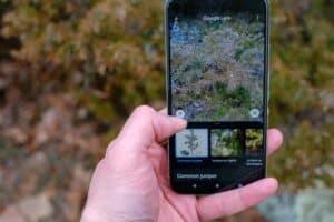 تعرف على ميزات التحرير المذهلة في تطبيق صور جوجل