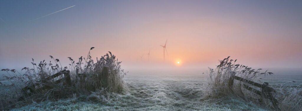 الأمم المتحدة تحتفل باليوم الدولي لنقاوة الهواء تحت شعار «هواء صحي، كوكب صحي»